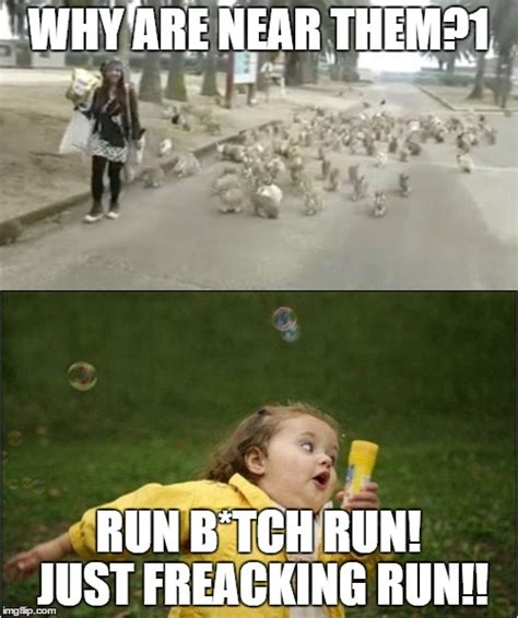 Running Away Meme - this was one of my meme comment under one raydog s meme about bunnies xd imgflip