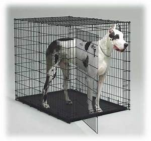midwest 1154u big dog crate With big dog cage