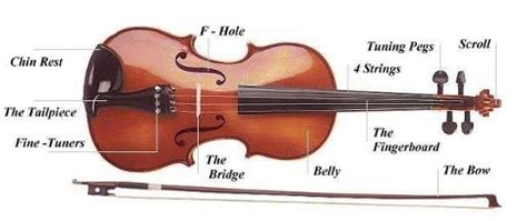 Diagram Of Violin Part by In The Key Of G