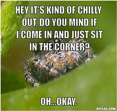 Cute Spider Meme - chilly memes image memes at relatably com