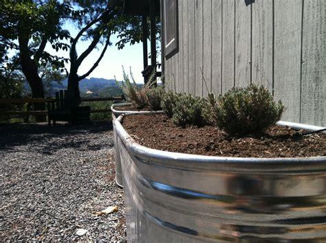 vignette design  galvanized water trough raised bed garden