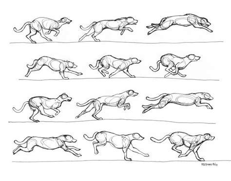 greyhound running  renegadestudios art pinterest