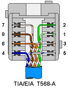 Terminating Wiring Wall Plates Cat Coaxial Phone