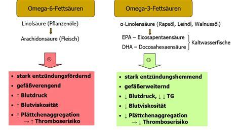 Omega 4 fettsäuren