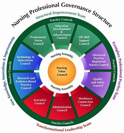 Professional Practice Governance Nursing Structure Christianacare