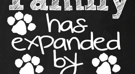 puppy announcement  family