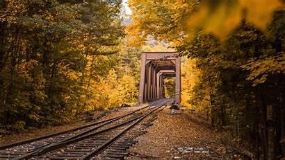 Autumn Foliage Railway Trees Background Widescreen 1080p