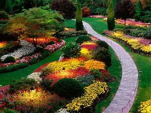 Planter Des Choux Fleurs : jardin d 39 t d corations de plantes et fleurs remarquables ~ Melissatoandfro.com Idées de Décoration