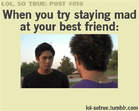 Stay Mad Meme - trying to stay mad at your best friend funsubstance