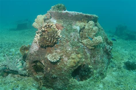 New Deathcare Trend: Green Burial at Sea in Artificial Reef Balls
