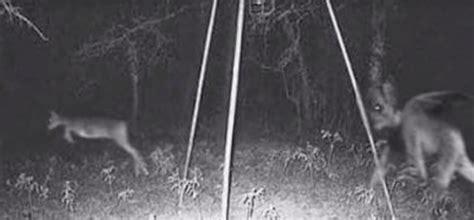 gruselig unerklaerliche aufnahmen von nachtsichtkameras