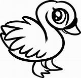 Coloring Pages Animal Baby Swan sketch template