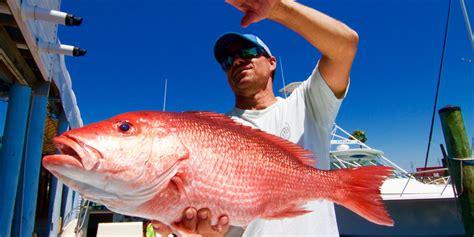 fishing panama florida inshore fl