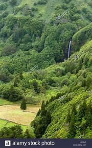Steinmauer Mit Wasserfall : landschaft mit kleinem wasserfall portugal gewesen flores landschaft mit einem kleinen ~ Markanthonyermac.com Haus und Dekorationen