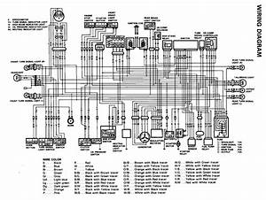 2007 Ktm 450 Wiring Diagram
