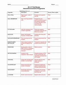 Cell Organelles Worksheet