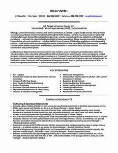 cv template for marketing job - transportation and marketing coordinator resume template