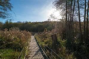 Maincourt Sur Yvette : envie de nature parc naturel r gional de la haute vall e de chevreuse ~ Melissatoandfro.com Idées de Décoration