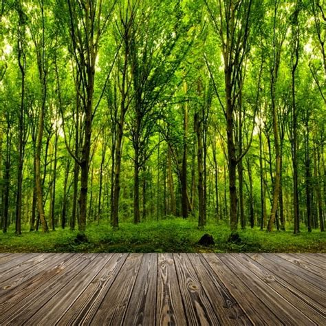 Backdrop Outdoor by 8x12ft Outdoor Green Trees Forest Woods Wooden Plank
