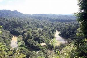 Borneo Rainforest Lodge at Danum Valley -- borneo_3758