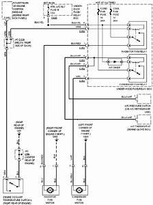 Honda Accord 2010 Fuse Diagram