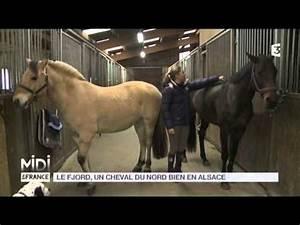 Bon Coin Alsace Haut Rhin : sch ma r gulation plancher chauffant le bon coin alsace animaux ~ Gottalentnigeria.com Avis de Voitures
