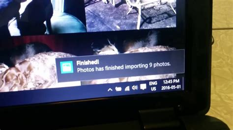 windows  importing pictures   sd card youtube