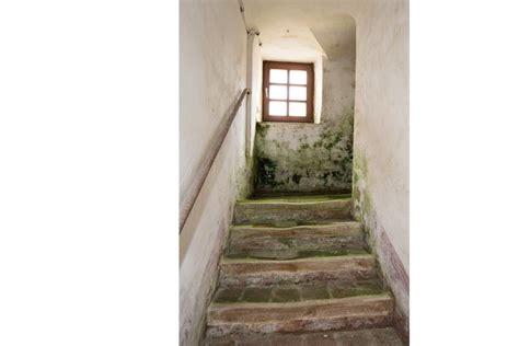 Schimmel Im Treppenhaus by Baulicher Zustand
