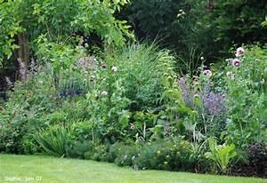 massif avec des hortensias recherche google massif With idee amenagement jardin paysager 16 massifs de roses mon jardin reve