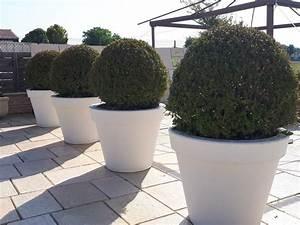 Pot Grande Taille : les 27 meilleures images du tableau pot toscane en pierre ~ Teatrodelosmanantiales.com Idées de Décoration