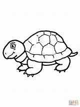 Tortoise Coloring Turtle Hare Disegni Template Colorare Printable Outline Disegno Popular sketch template