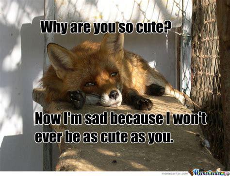 So Cute Meme - why are you so cute by deadoralive meme center