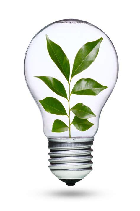 green light bulbs green light go the light bulb finding phone app