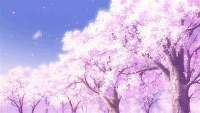 Blossom Cherry Gifs Memo Pad Memochou Heavens