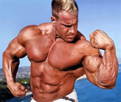 Bodybuilder Bodybuilding Bodybuilders Gym Fitness During Gyp