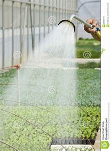 Manual Irrigation Royalty Free Stock Image