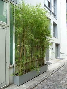 Rideau Pour Balcon : rideau de bambous plant s dans une jardini re impasse ~ Premium-room.com Idées de Décoration