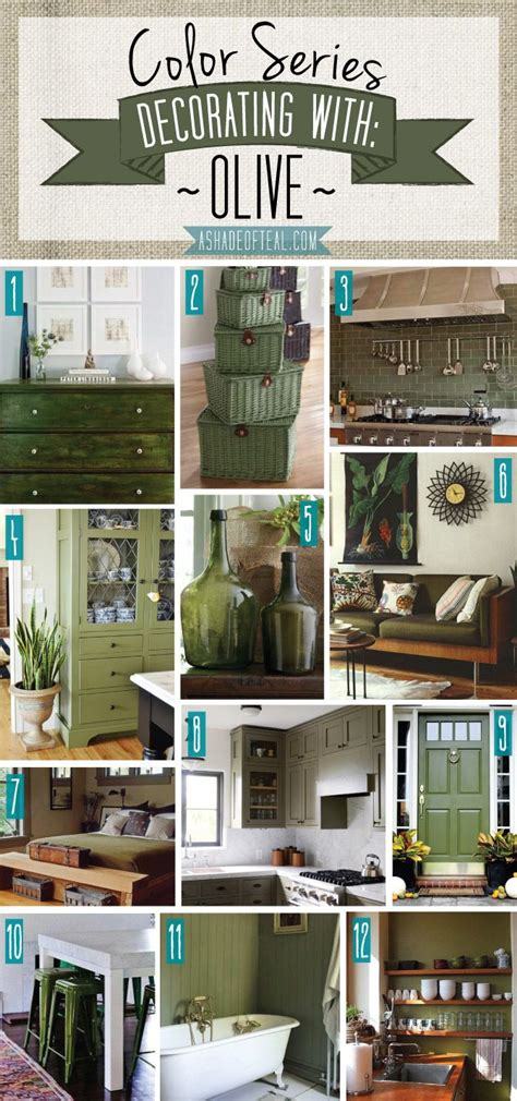 olive green kitchen accessories best 25 olive green walls ideas on olive 3667