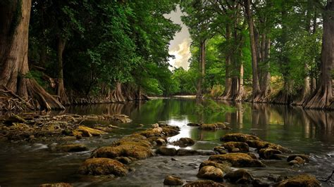 Nature Wallpaper by Nature Hd Wallpapers 1600x900 Gallery