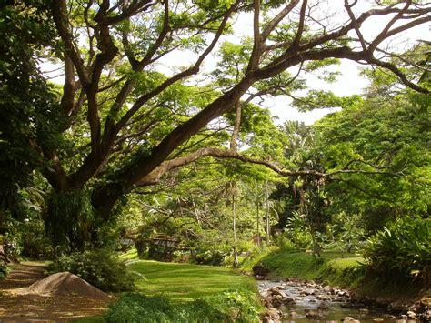gardens kauai file mcbryde garden kauai hawaii stream view jpg wikimedia commons