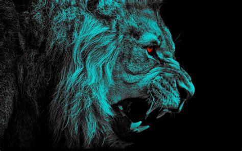 scarica sfondi leone il buio arte sfondo nero lion