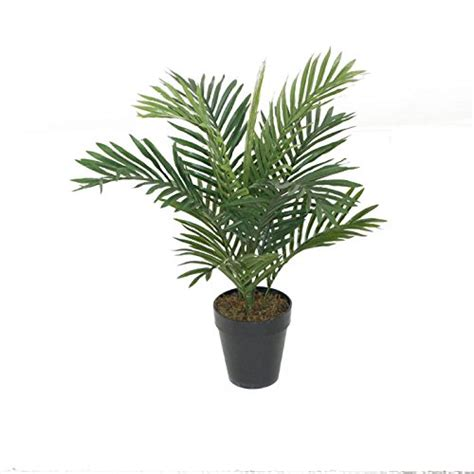 cheap indoor plants artificial outdoor plants cheap uk review
