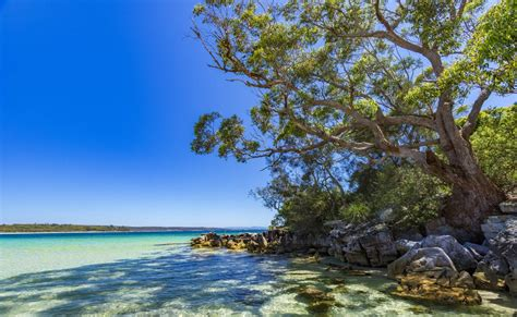 Jervis Bay, Australia - Find Hotels, Camping, Beaches ...