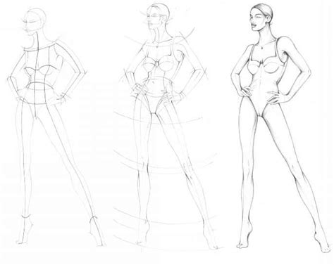 Female Body Outline Free Download Clip Art