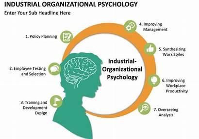 Psychology Organizational Industrial Programs Graduate Helptostudy