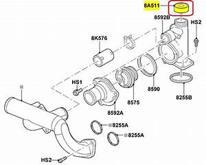 Ford 5 4 Timing Chain Diagram  Ford  Auto Wiring Diagram