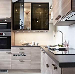 Meuble De Cuisine Ikea : cuisine ikea faktum ~ Melissatoandfro.com Idées de Décoration