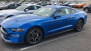 2019 Velocity Blue Ecoboost Mustang - YouTube