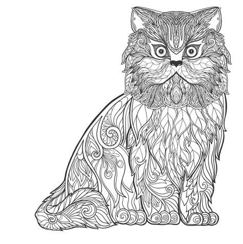 sketsa mewarnai kucing anggora belajarmewarnai info