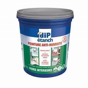 Anti Humidité Mur : peinture anti humidit gris 0 75l castorama ~ Edinachiropracticcenter.com Idées de Décoration